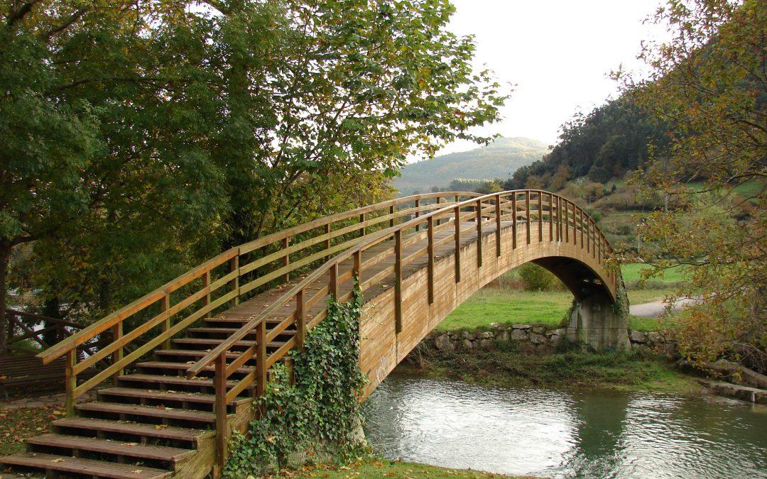 COPARENTALIDAD, un puente a construir